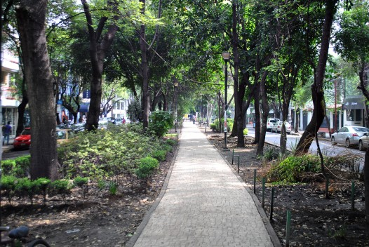 avenida-mazatlan-condesa